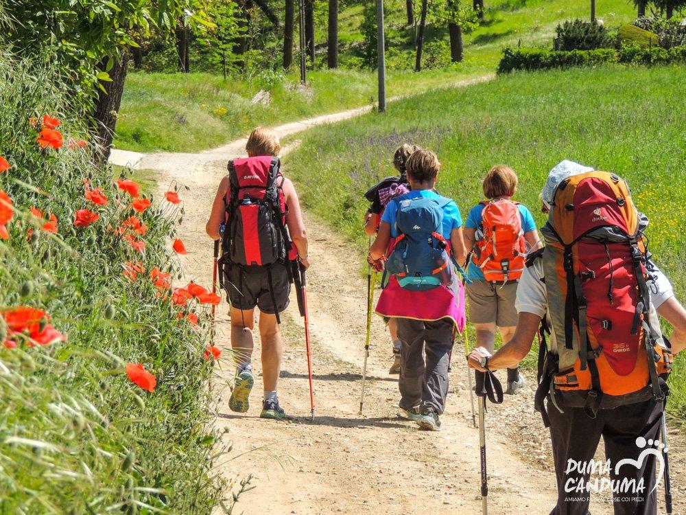 Trekking Superga-Crea-Casale