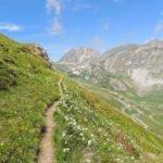 Il Sentiero dei Fiori - Valle Stura