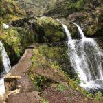 Trekking a Madeira