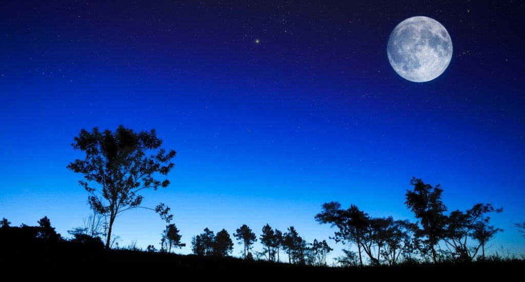 DORA by NIGHT