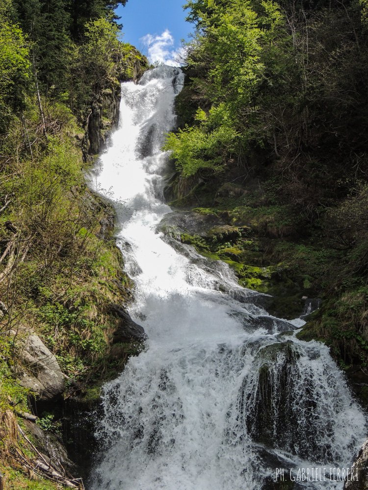 Trekking in Valle Pesio