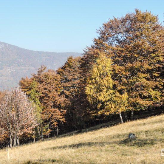 Roc du Iermou - Piemonte (Torino)