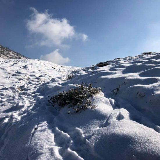 Escursione al Colle Lunella