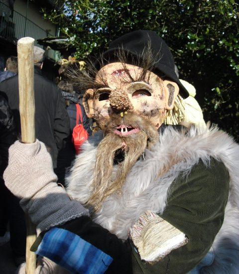 Escursione al Carnevale di Lajetto