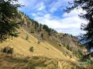 Traccia GPX dell'anello del Rifugio Toesca in Valle di Susa