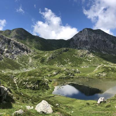 Brignola Val maudagna