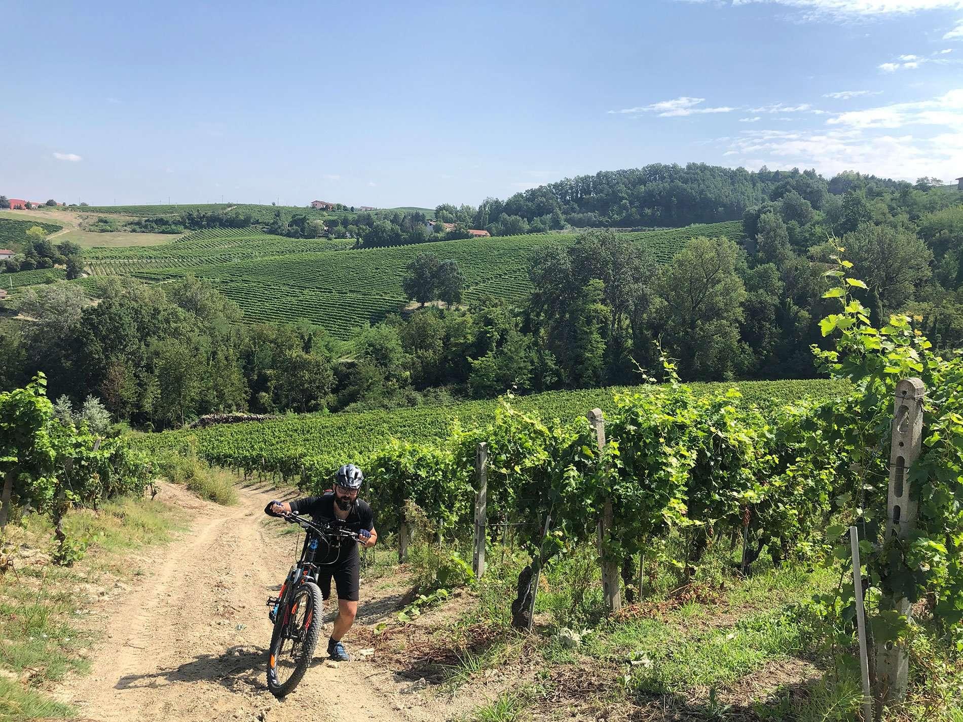 Progettazione itinerari escursionistici e cicloturistici