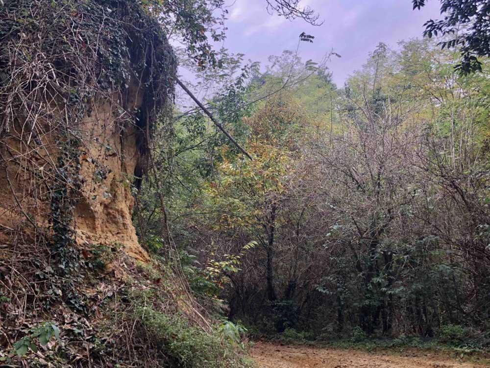 Le Rocche del Roero vicino a Monteu Roero