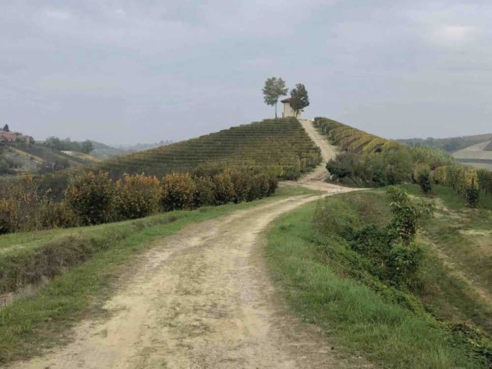 Scorci panoramici vicino a Monteu Roero