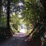 Storie di pietra a Villarbasse