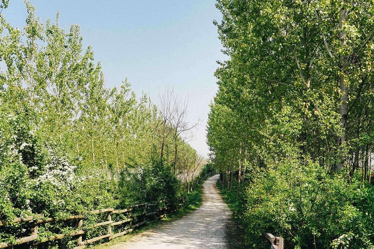 Itinerari in bicicletta in Piemonte