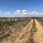 Il Cammino della Via Peuceta da Bari a Matera