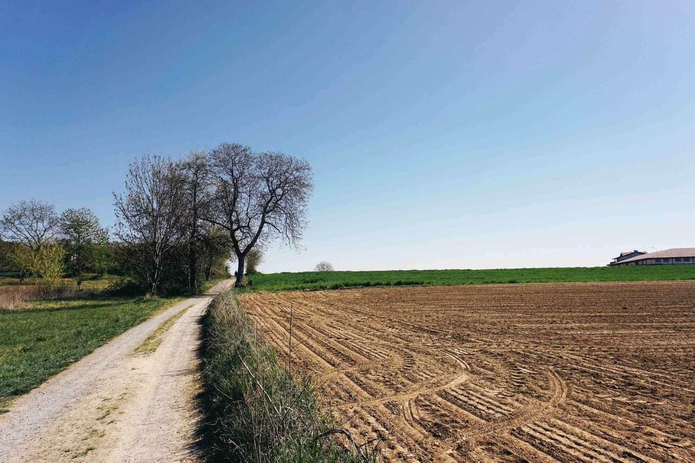 La Via dei Pellegrini in bici
