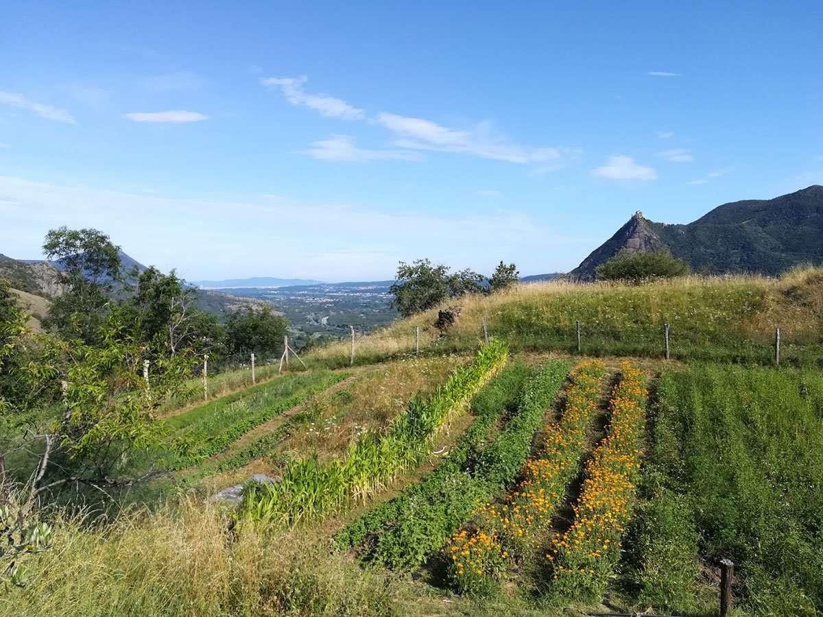 Aperitivo tra le Erbe Aromatiche alla Calcina in Val di Susa