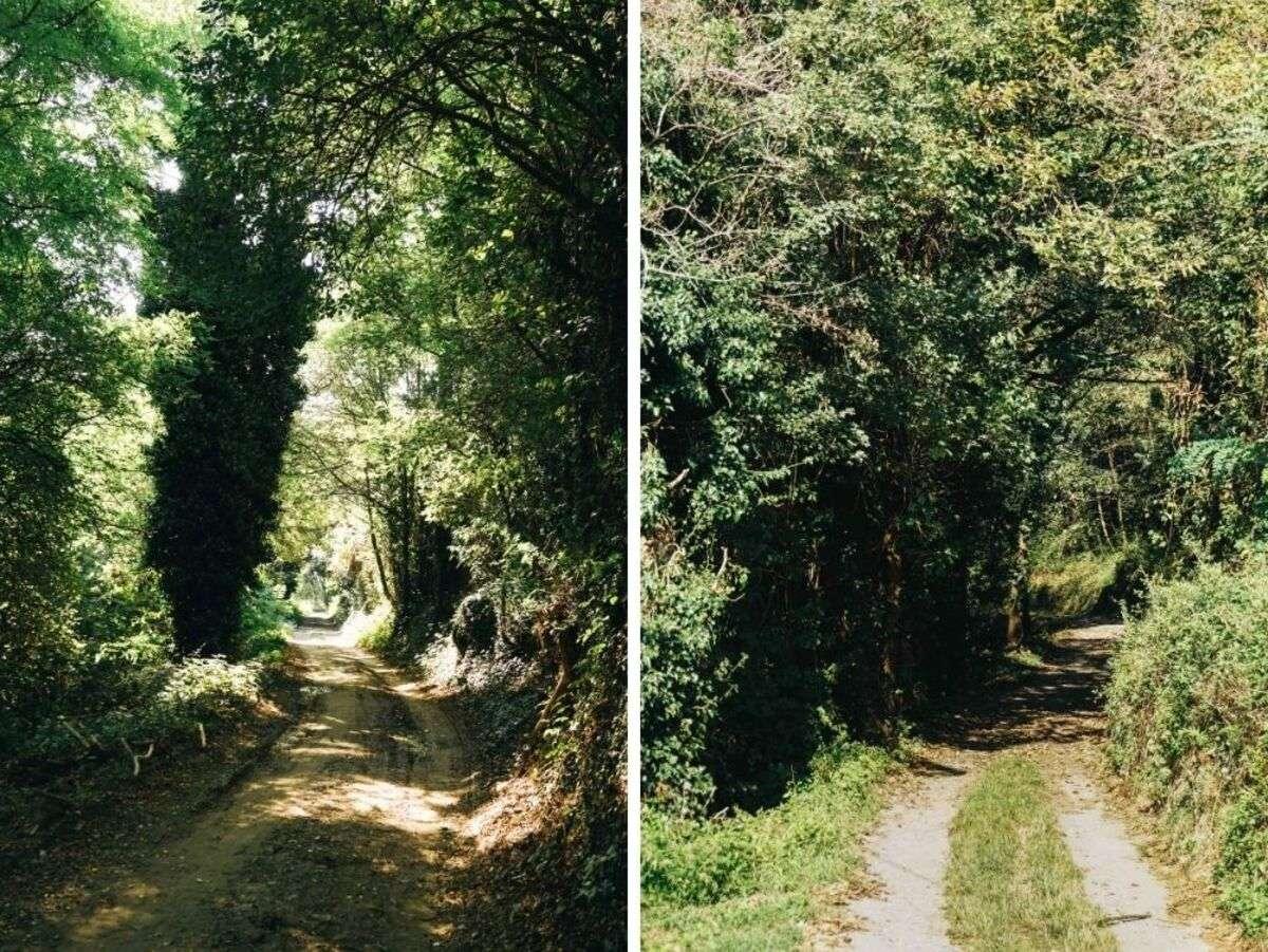 La Collina Morenica di Rivoli e Avigliana in e-bike