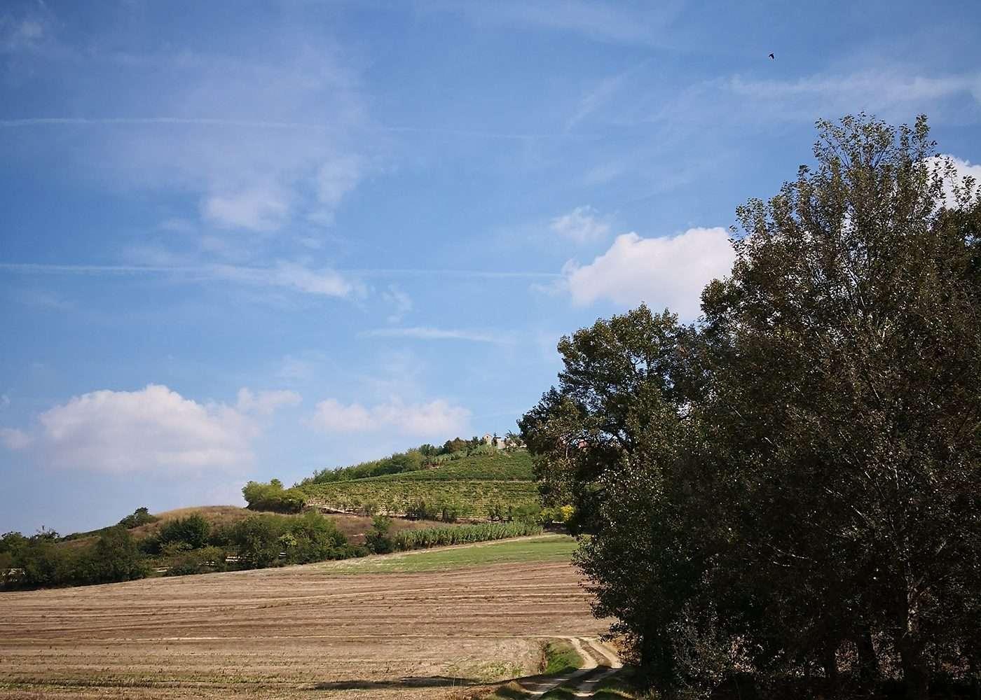 escursione-casorzo-monferrato