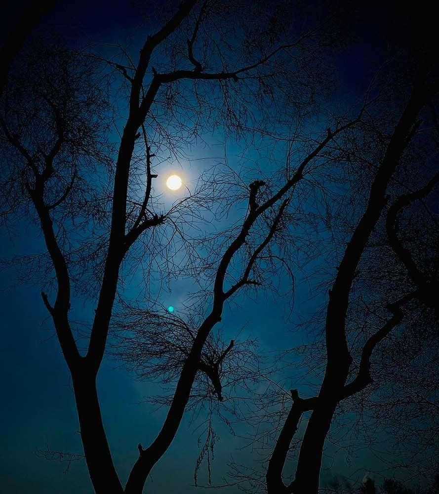 escursione-notturna-avigliana